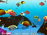 Игра Подводный Мир