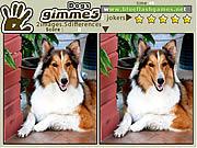 Игра Найди 5 Отличий - Собаки
