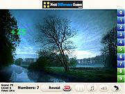 Игра Спрятанные цисла - Ридж