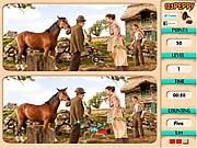 Игра Найти отличия - Боевой конь