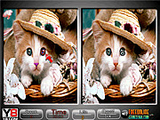 Игра Pet Animals Spot The Difference Game