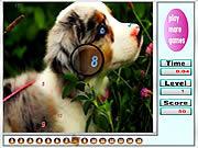 Игра Животные - найти числа