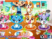 Игра Найти буквы - Магазин игрушек