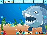 Игра Освобождение золотой рыбки