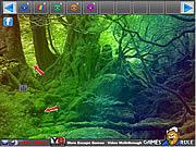 Игра Освобождение из леса