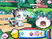 Игра Забота о котенке