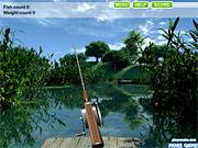 Игра Летняя рыбалка на озере
