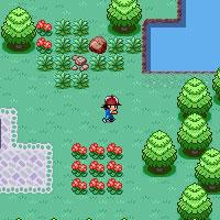 Игра Покемоны: Лесной Квест