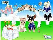 Игра Венчание любимчика