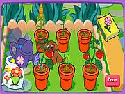 Игра Волшебный сад Даши