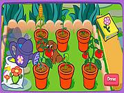 Игра Волшебный сад Доры