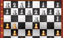 Игра Шахматный маньяк