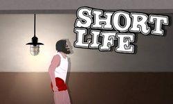 Игра Короткая жизнь
