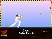 Игра Топ крикет