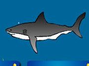 Игра Приманка Для Акулы