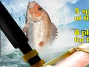 Игра Рыбалка на Море