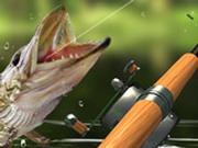 Игра Рыбалка: Утренний Улов