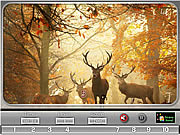 Игра Природа фотограф - найди числа