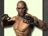 Игра Арена Боя Онлайн: Боец 3Д