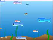Игра Мир рыбок