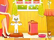 Игра Забота о виртуальном коте